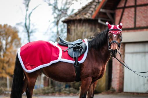 "Nierendecke ""Christmas"" Red Glitter"